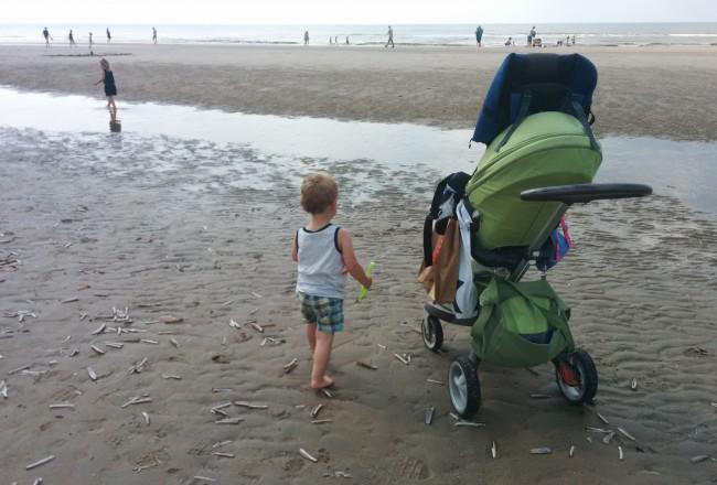 weekendje Texel met kids