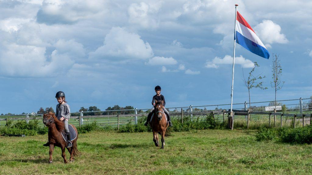 Paardrijden bij BoerenBed TaarTenTuin